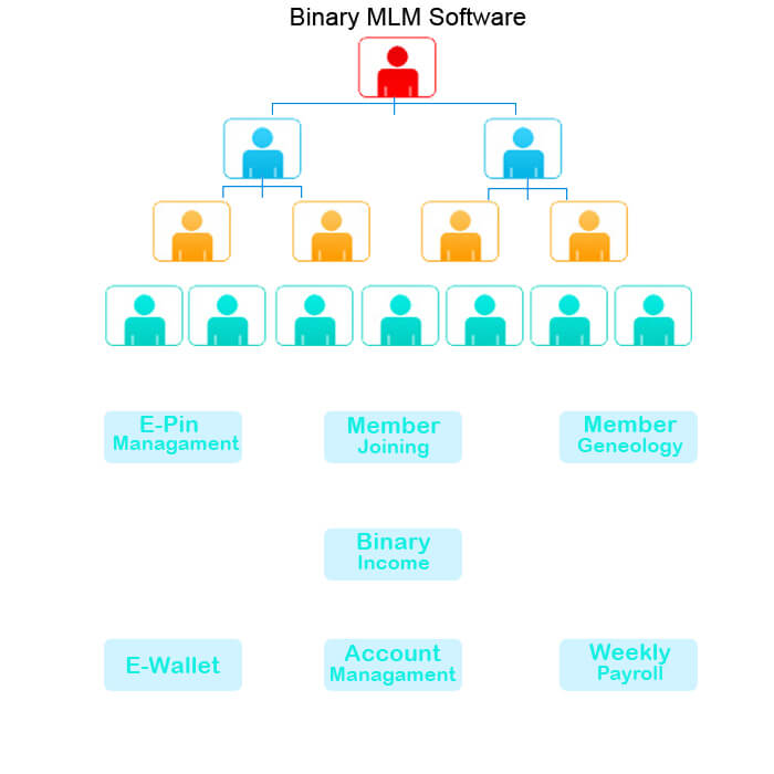 binary mlm plan software India