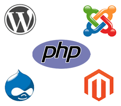 dynamic web designing company in Ahmedabad