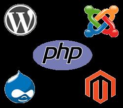 Dynamic Website Development Dynamic Website Development Company Ahmedabad Gujarat India
