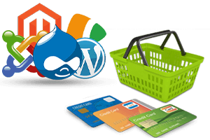 e commerce web development in ahmedabad