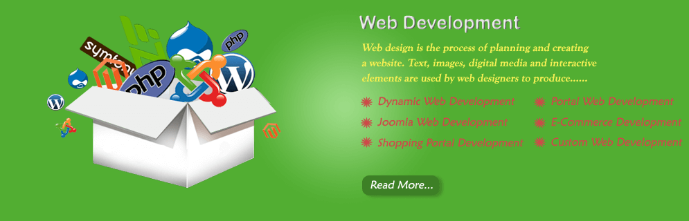 Web Development company Banner